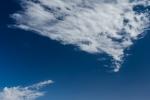 Baum mit Wolke