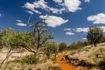 Outback-Feeling