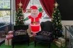 Santa & Mrs Claus