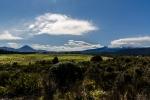 Ngauruhoe und Ruapehu