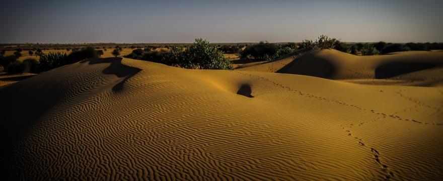 Wüste Thar, Indien