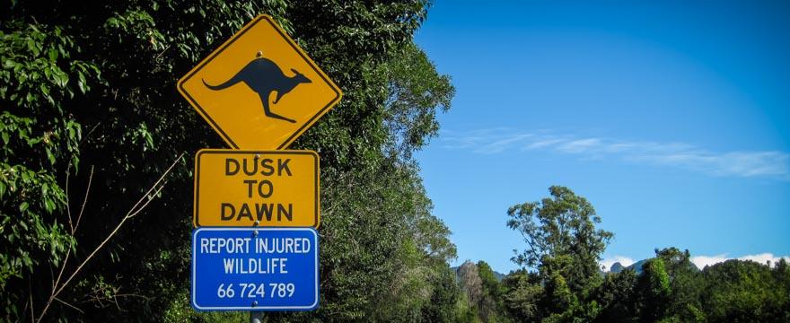 Australien Känguru Schild